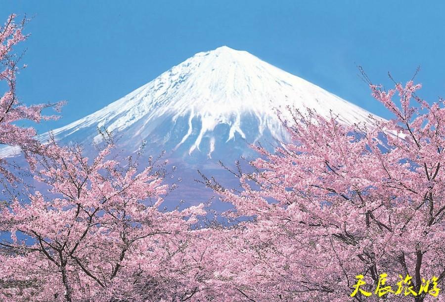 日本(Japan) 单次个人旅游签证 (沈阳领区)
