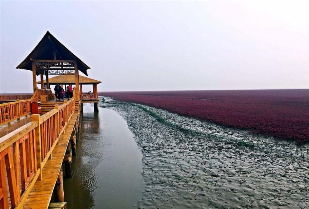 红海滩01