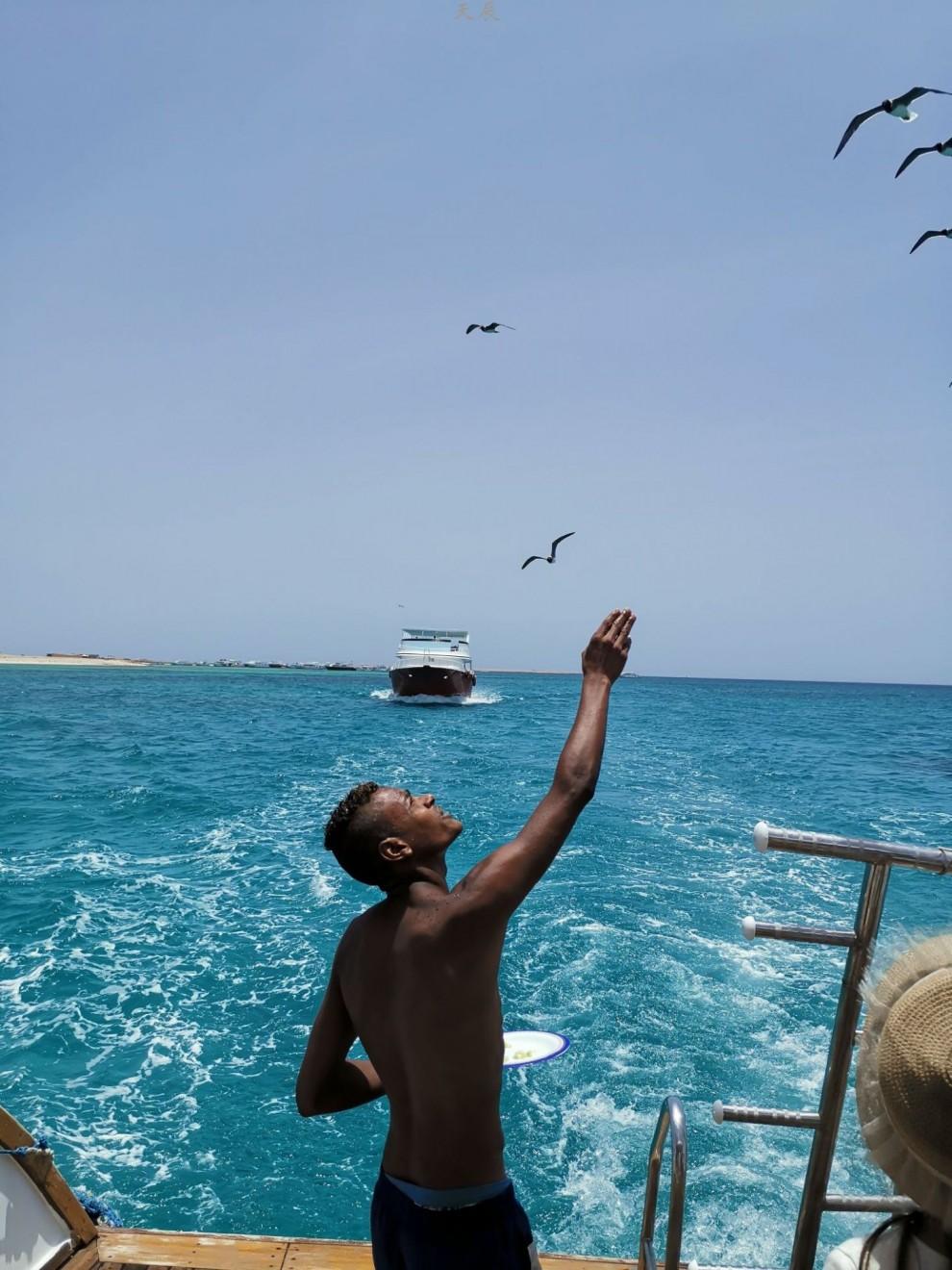 埃及红海7