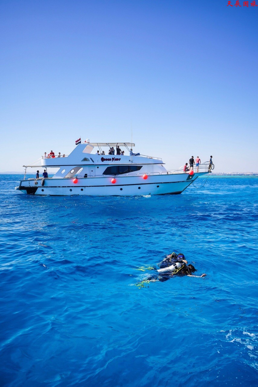 埃及红海10