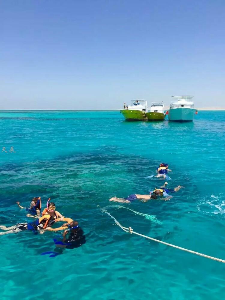 埃及红海9
