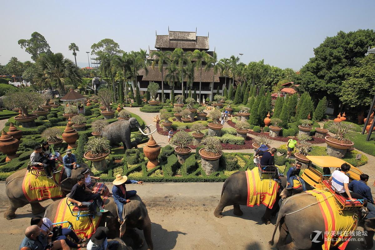 泰国芭堤雅东芭乐园映像