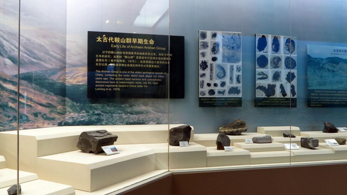 再拍辽宁古生物博物馆